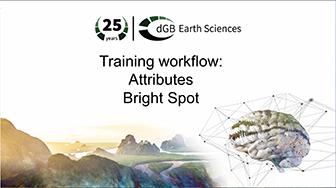 Training workflow: Attributes - Bright Spot