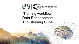 Training workflow: Data Enhancement - Dip Steering Cube