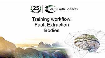 Training workflow: Fault Extraction - Bodies