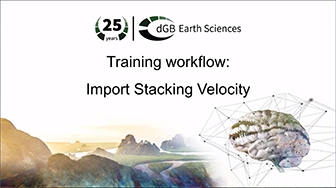 Training workflow: Import Data - Stacking Velocity