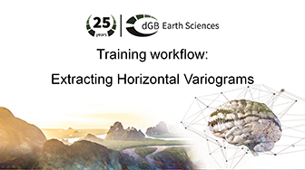 Training workflow: Seismic Inversion - Extracting Horizontal Variograms